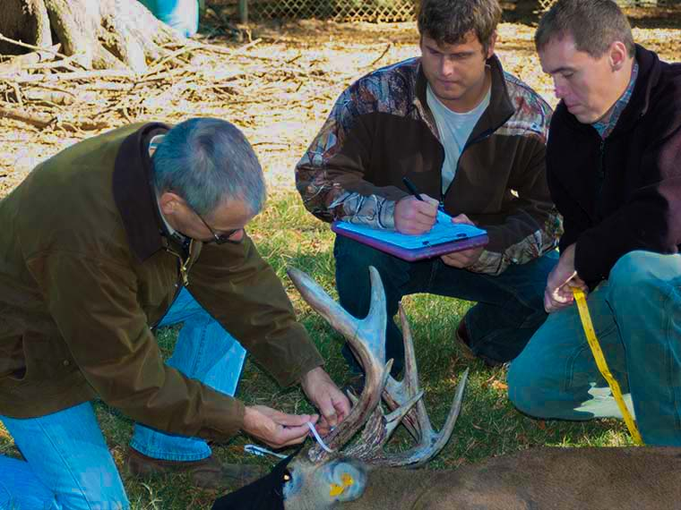 Wildlife Graduate Programs