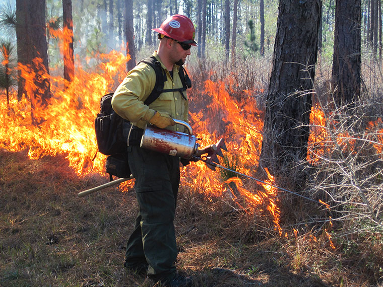 Prescribed burn workshop set for Feb. 19 in Raymond
