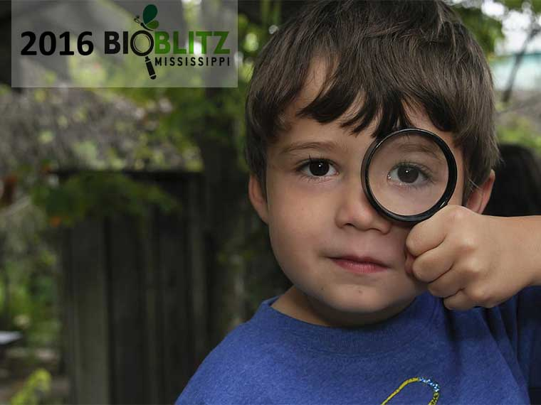 BioBlitz dates set for Jackson, Tupelo