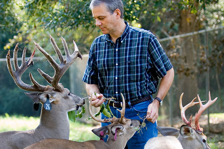 MSU takes all at Southeastern Deer Study Group competition