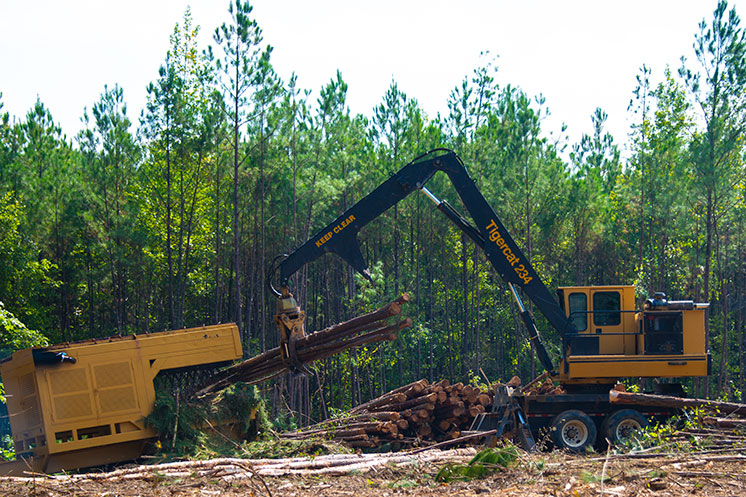 Longest-running forestry equipment show in the woods set for Sept. 21-22