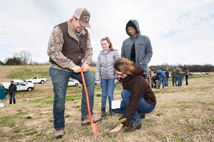 MSU students celebrate Arbor Day with tree planting