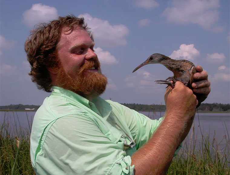 Scientists at work: Sloshing through marshes to see how birds survive hurricanes