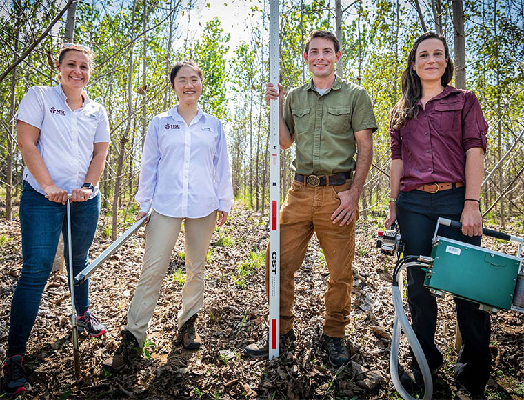 $2.5 million DOE grant to help MSU researchers measure benefits of growing trees for biofuel