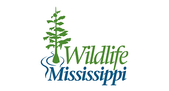 Wildlife Mississippi